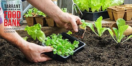 Planning Your Food Garden  tickets