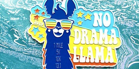 Now Only $10! No Drama Llama 1M 5K 10K 13.1 26.2 - Worcestor tickets
