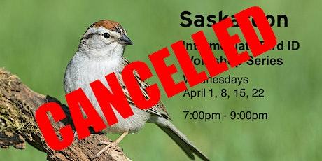 CANCELLED - Saskatoon - Intermediate Bird ID Workshops tickets