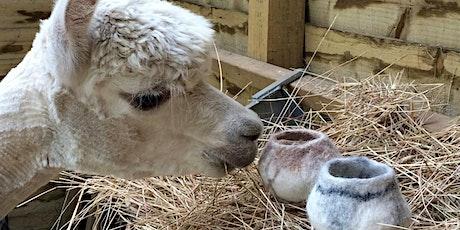 Crafts with Alpaca Fleece tickets