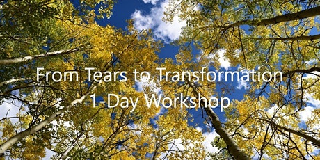 IFS & Parenting, 1-Day Zoom Workshop with Frank Anderson, MD tickets