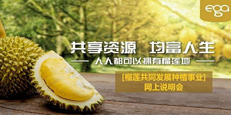 MusangKing Durian Orchard -Joint Development(Online Briefing) tickets