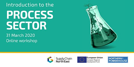 An Introduction to the Process Sector with NEPIC tickets