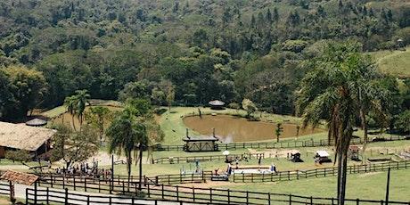 Desconto: Parque Della Vittoria - Covid-19 - Vamos ajudar os animais! ingressos