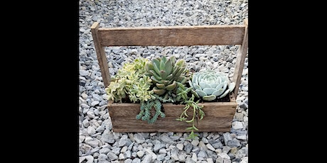 Sips & Succulents at Springfield Manor 7/18 tickets
