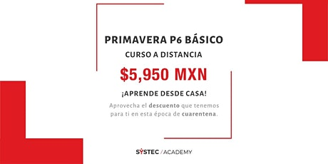 Curso básico de Oracle Primavera  P6 (a distancia) boletos
