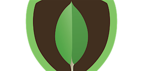 4 Weekends MongoDB Training in London   May 30, 2020 - June 21, 2020 tickets