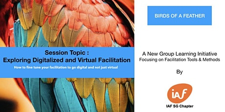 Exploring Digitalized and Virtual Facilitation tickets