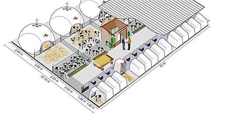 CORSO ON-LINE - Abbattere i costi della vitellaia biglietti