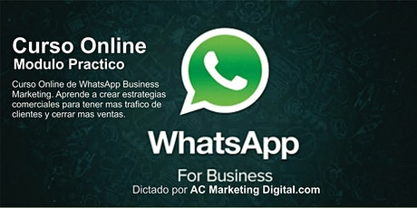 Curso Online de WhatsApp Marketing entradas