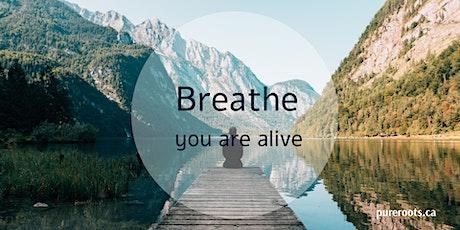ONLINE Breathwork Journey ~ An Active Meditation tickets