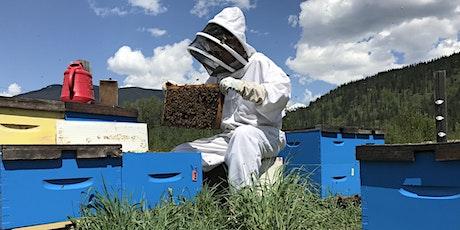 Beginner Beekeeping Course tickets