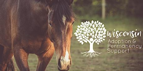 Horse Experience Morning: Onalaska tickets