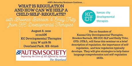 Saturday Seminar: Regulation and How Can We Help a Child Self-regulate? tickets