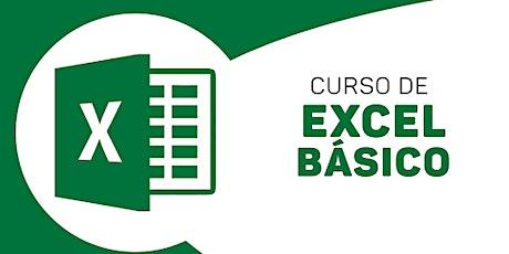 Curso Online de Excel - Nivel Principiantes entradas