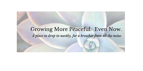 Growing More Peaceful.  Even Now tickets