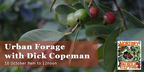 Urban Forage with Dick Copeman tickets