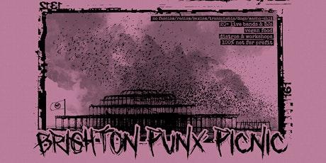Brighton Punx Picnic 2020 tickets