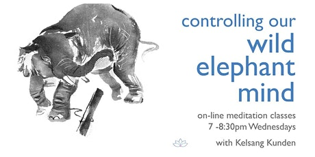 Online Meditation Class -  Controlling Our Wild Elephant Mind- April 15 tickets