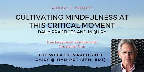 Livestream Jon Kabat-Zinn: Cultivating Mindfulness at this Critical Time tickets