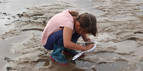 Mud Dipping tickets