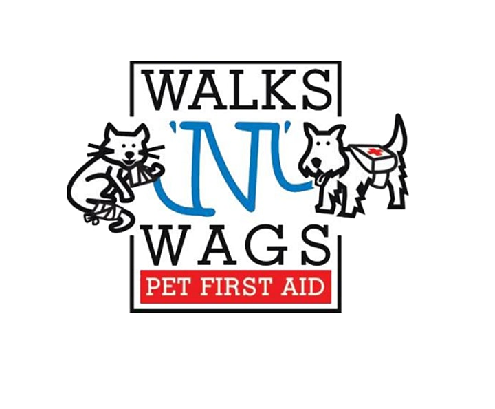 Pet First Aid - June 2021 image