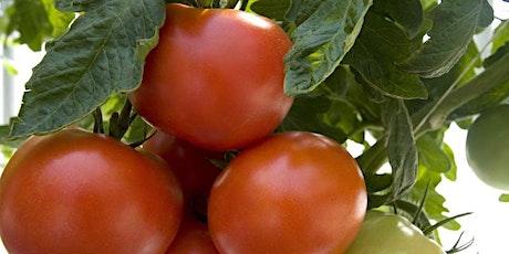 "Virtual Gardening - ""Vegetable Gardening 101"" tickets"