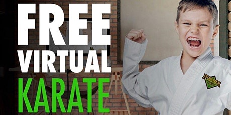 Beginners Kids Virtual Martial Arts Classes tickets