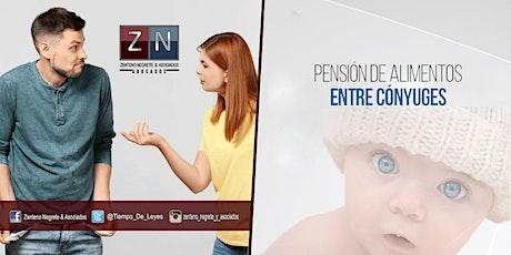Preguntas y Respuestas sobre Pensión Alimenticia entre Cónyuges. boletos
