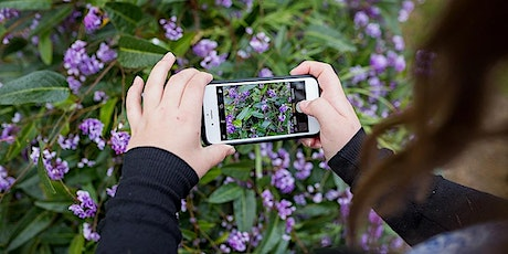 Indie Kids Virtual Photography Workshop (Easter Holidays) tickets
