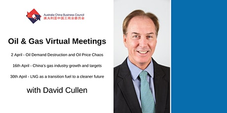 Oil Demand Destruction and Oil Price Chaos - Virtual Meetings tickets