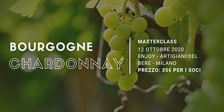 Bourgogne Chardonnay | Masterclass Degustibuss International tickets