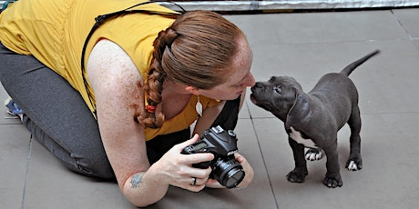 Online Pet Parenting Series: Phone Photography with NYC Pet Photographer tickets