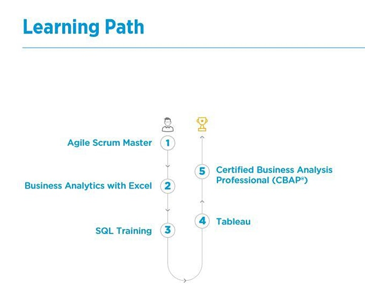 5 Course Instructor Led Business Analysis MasterClass Program image