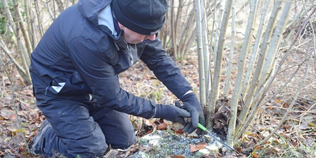 Practical Coppicing  tickets