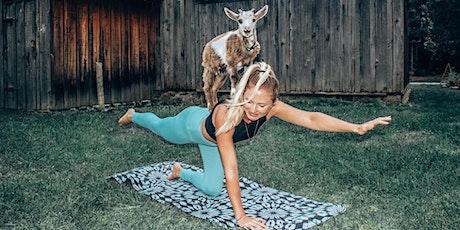 Séance de Goat Yoga billets