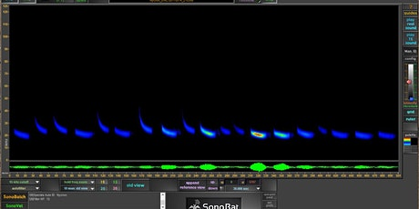 SonoBat 4-UK Analysis Software - Level 1 tickets