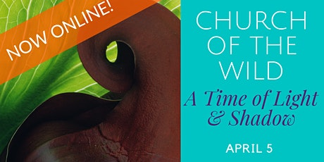 NOW ONLINE - Church of the Wild - A Time of Light & Shadow tickets