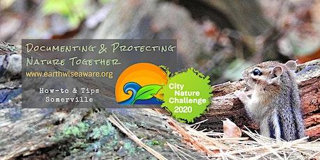 2020 Urban Wildlife Quest How-to: Somerville tickets