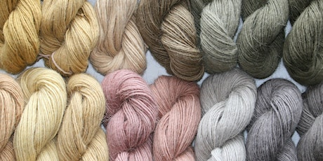 Wool Fest 2020: Botanical Dyes the Zapotec Way tickets