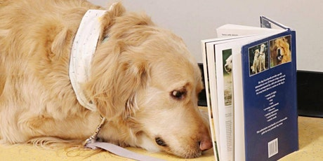 Winnipeg Humane Society Book and DVD Sale 2020 - Sept 12 & 13 tickets