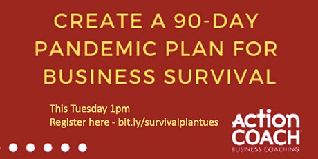 90 Day Survival Planning Session for Your Business tickets