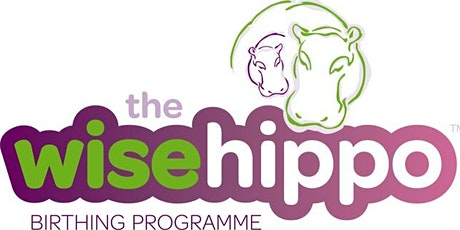 Wise Hippo Birthing Programme tickets