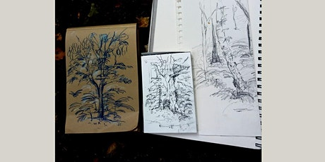 Woodland Sketching in September tickets