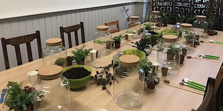 Terrarium 'Closed Jar' Workshop tickets
