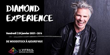 Diamond Experience | Steve Diamond  billets
