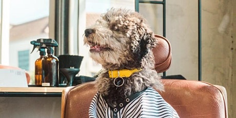 Online Pet Parenting Series: Dog Grooming 101 with Downtown Doghouse tickets