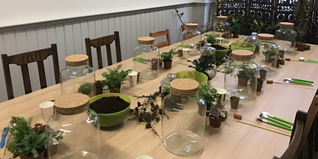 Terrarium 'Closed Jar' Workshop tickets