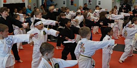 Online Virtual Karate Classes Kids, Teens & Adults tickets
