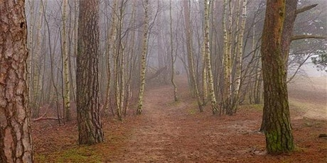 Photography - Woodland Landscapes tickets